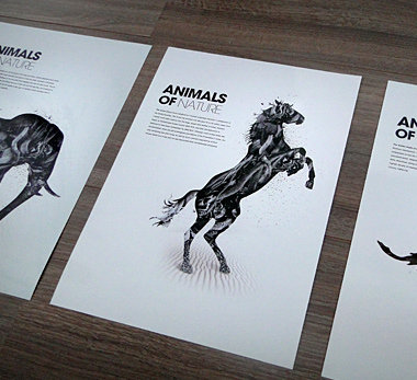 Freelance Graphic Designer, Patrick Monkel, featured on Creative Tempest